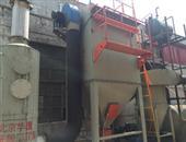 生物质锅炉cmp冠军厂家-生物质锅炉布袋cmp冠军价格